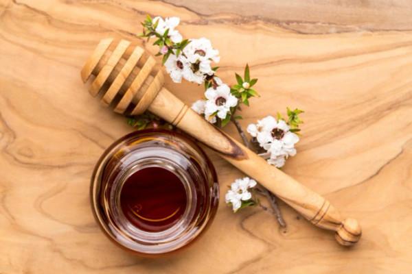 Terus, Apa Saja Manfaat Dari Madu Manuka (Manuka Honey)?
