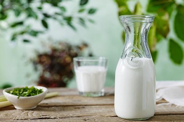 Probiotik Mengurangi Resiko Intoleransi Laktosa