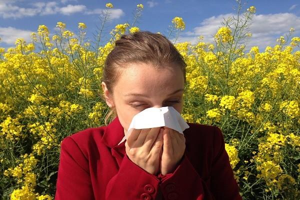 Suplemen Alami Untuk Alergi