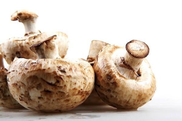 2. Jamur, bahan alami pengganti MSG