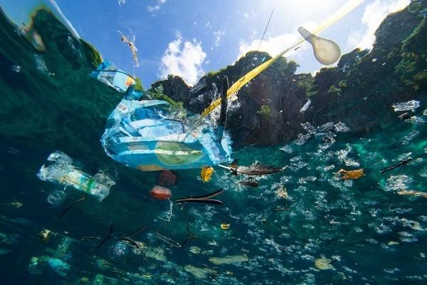 1. Alih-alih Menggunakan Plastik, Lebih Baik Bawa Tas Sendiri Saat Belanja