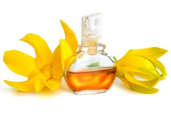Ylang-Ylang Oil, Kebaikan Minyak Dari Bunga Kenanga