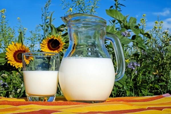 Kalsium, Nutrisi Penguat Tulang Ibu, Bayi dan Janin